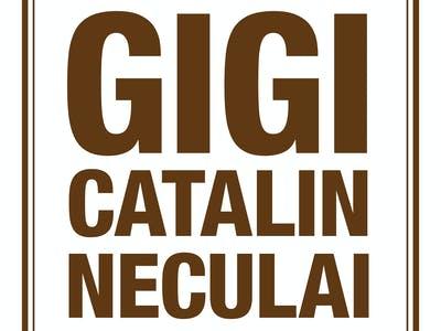 Gigi Catalin Neculai